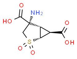 (1R,4S,5S,6S)-4-amino-2,2-dioxo-2λ6-thia-bicyclo[3.1.0]hexane-4,6-dicarboxylic acid