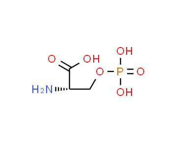 L-Serine monophosphoric acid
