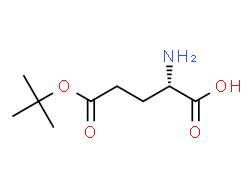 (2S)-2-amino-5-[(2-methylpropan-2-yl)oxy]-5-oxopentanoic acid