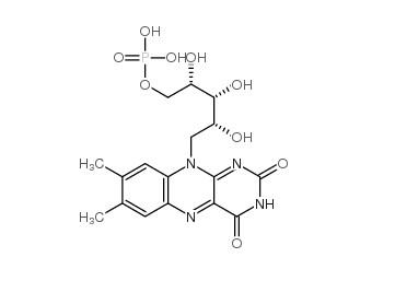 Riboflavine 5 Ph.