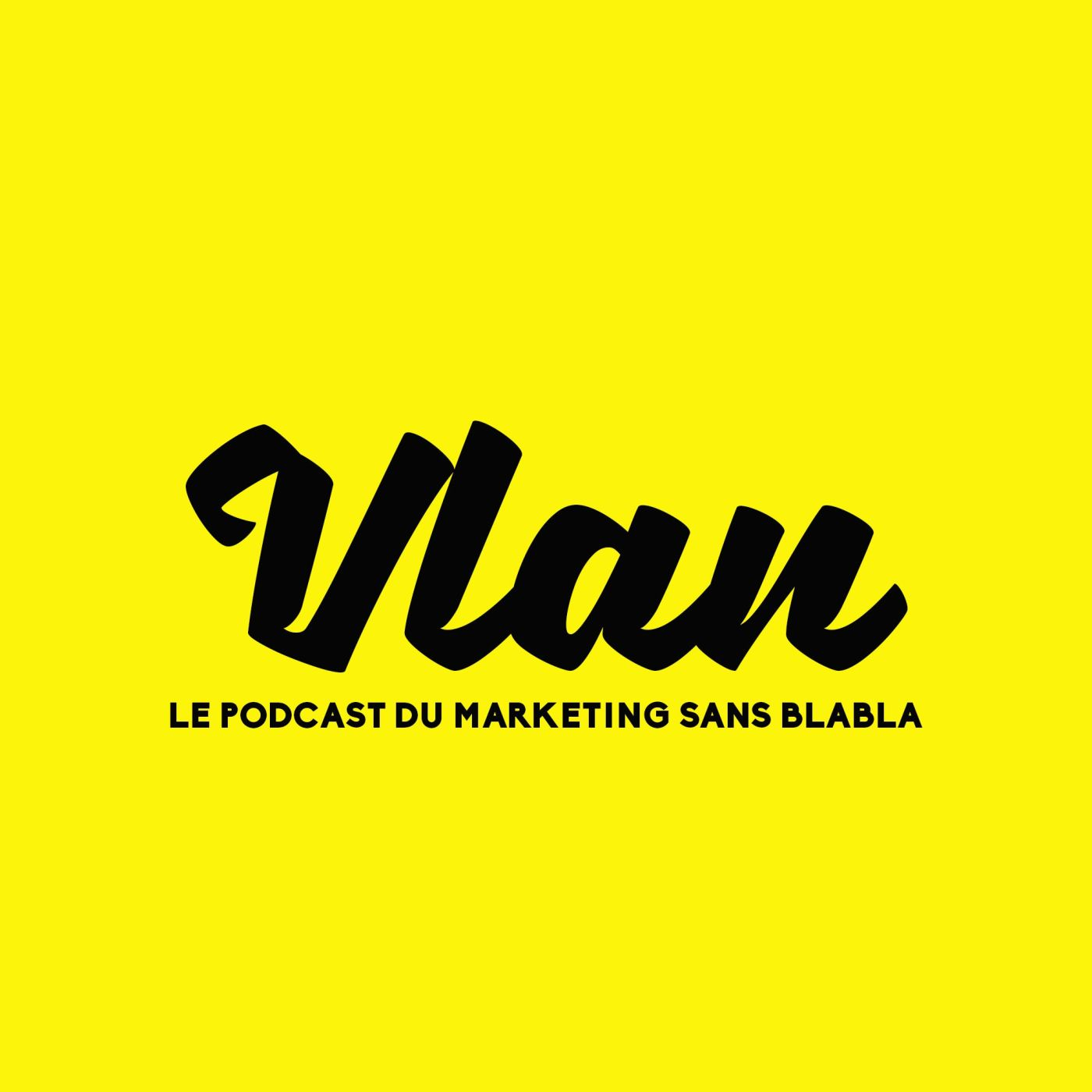 Vlan #36 Les 10 Impacts organisationnels du marketing d'influence
