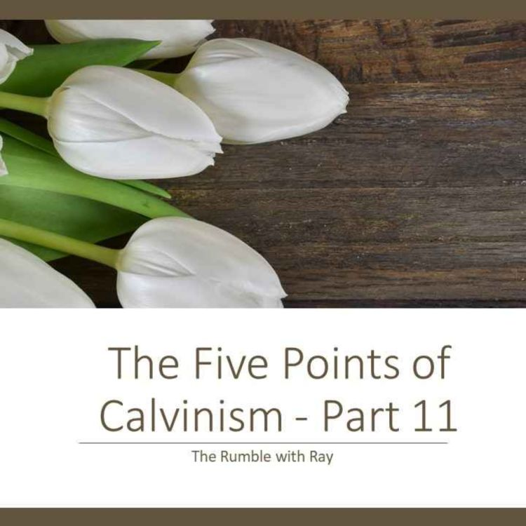 cover art for 181 - The Five Points of Calvinism, Part 11