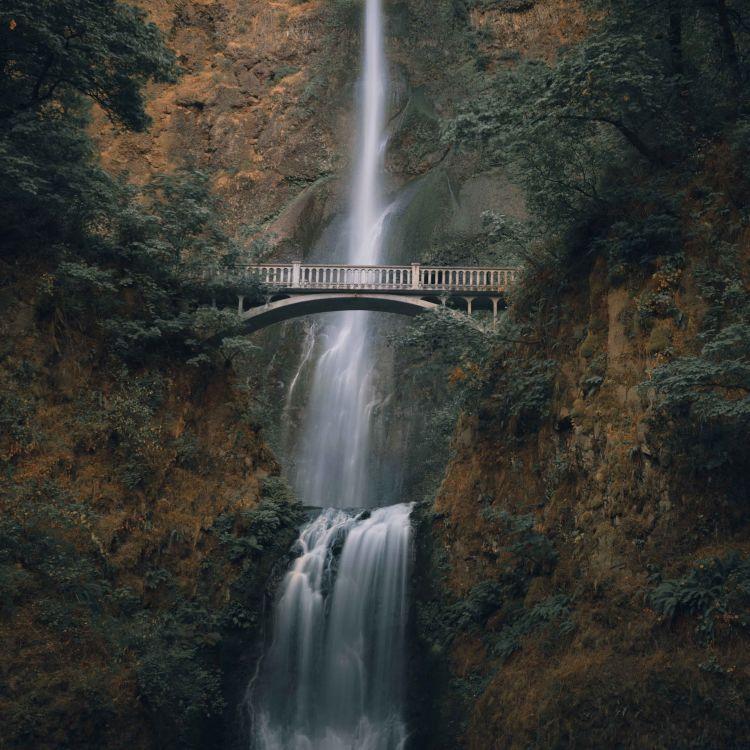cover art for 797 - Tudo o que você precisa saber sobre o Oregon!