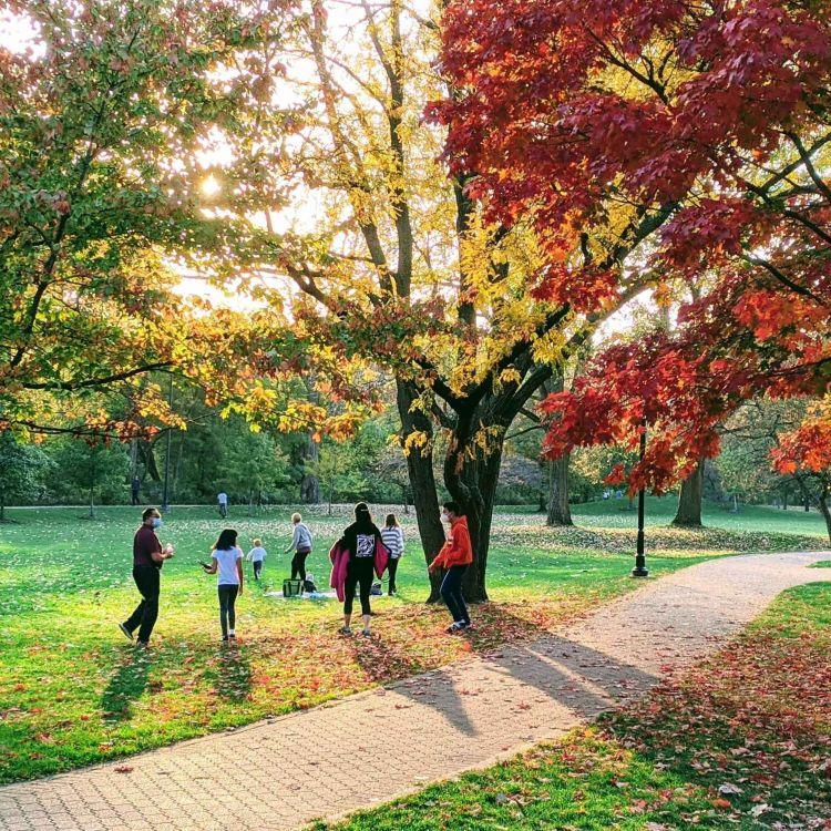 cover art for 819 - O que as áreas verdes podem fazer pela sua saúde mental e física?