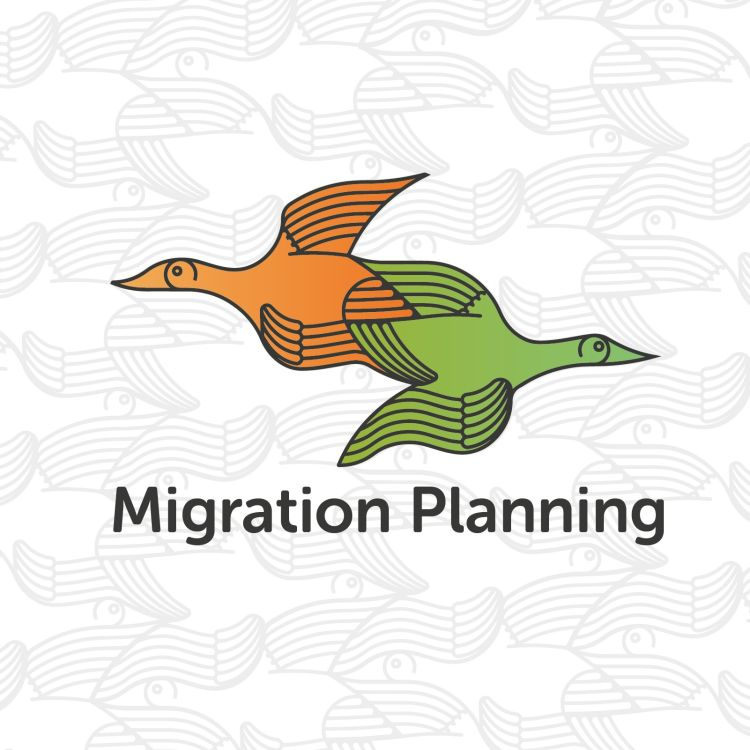 cover art for Migration Planning