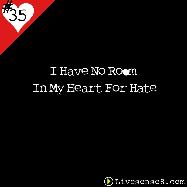 cover art for LS8 35: I Have No Room In My Heart For Hate