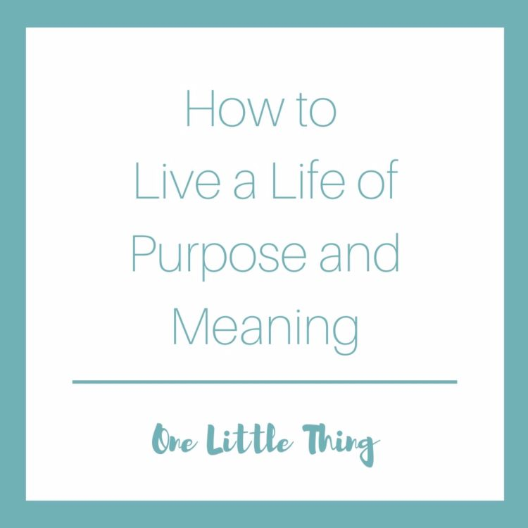 cover art for How to Live a Life of Purpose and Meaning: One Little Thing
