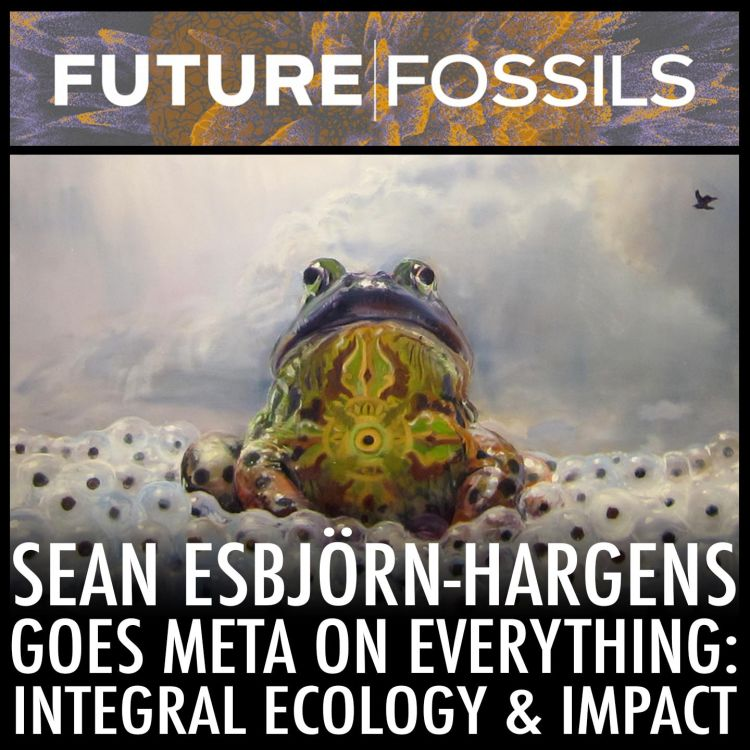 cover art for 60 - Sean Esbjörn-Hargens Goes Meta on Everything: Integral Ecology & Impact