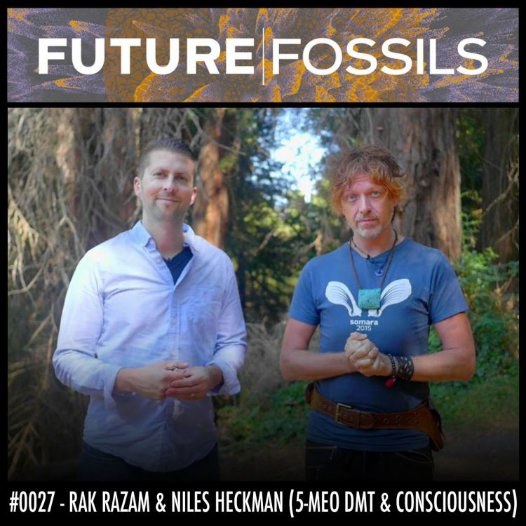 cover art for 27 - Rak Razam & Niles Heckman (5-MeO DMT & Consciousness)