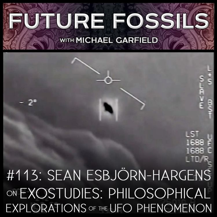 cover art for 113 - Sean Esbjörn-Hargens on Exostudies: Philosophical Explorations of the UFO Phenomenon
