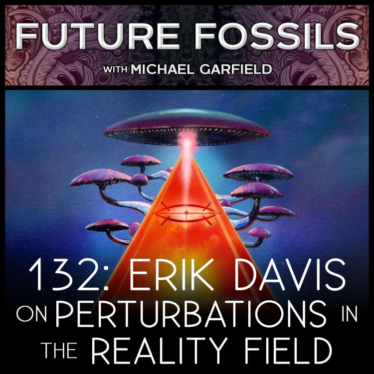 cover art for 132 - Erik Davis on Perturbations in the Reality Field