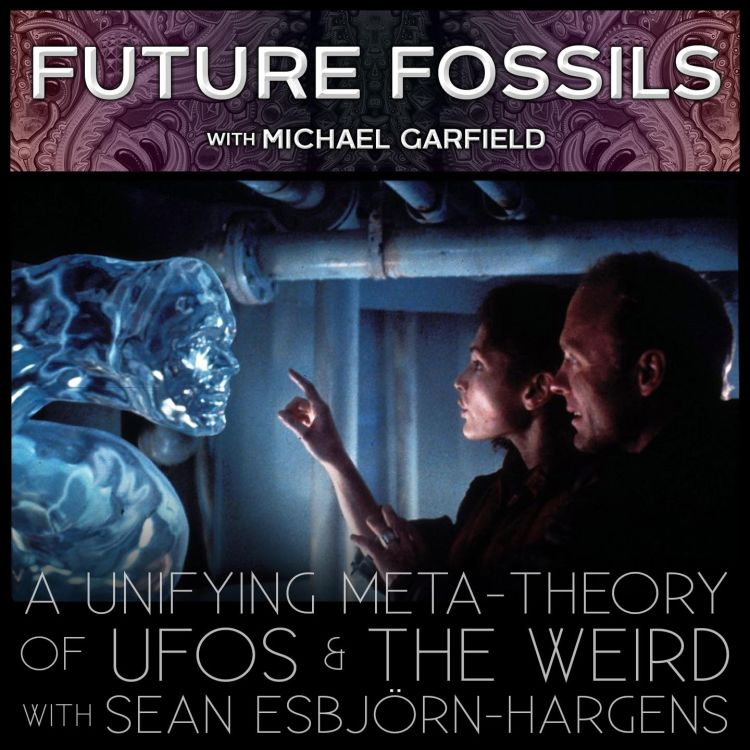 cover art for 150 - A Unifying Meta-Theory of UFOs & The Weird with Sean Esbjörn-Hargens