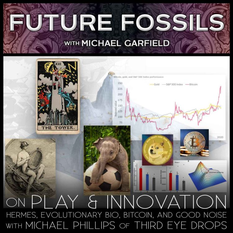 cover art for 161 - On Play & Innovation with Michael Phillip: Hermes, EvoBio, Bitcoin, and Good Noise