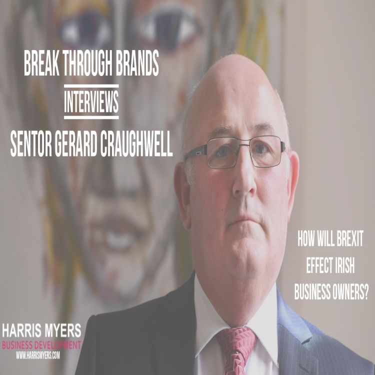 cover art for Ep 4: Interview with Senator Gerard Craughwell on Brexit for SMEs
