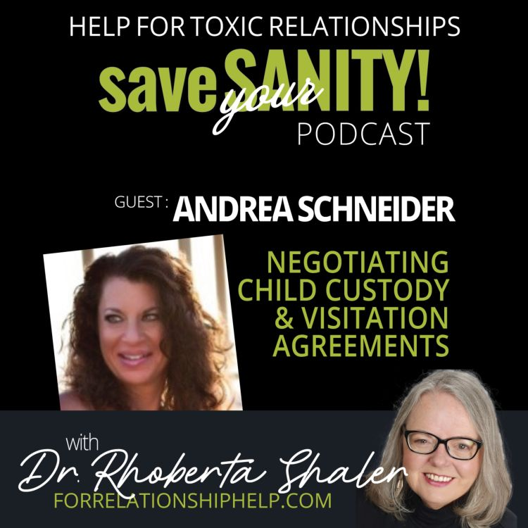 cover art for Tips on Negotiating Child Custody and Visitation   GUEST: Andrea Schneider, Attorney