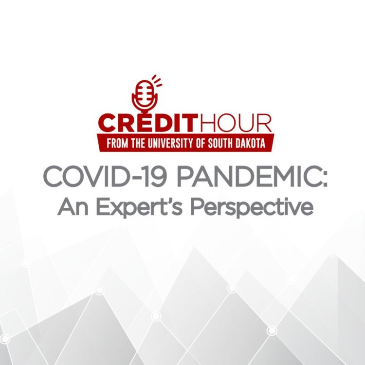 cover art for COVID-19 PANDEMIC | An Expert's Perspective