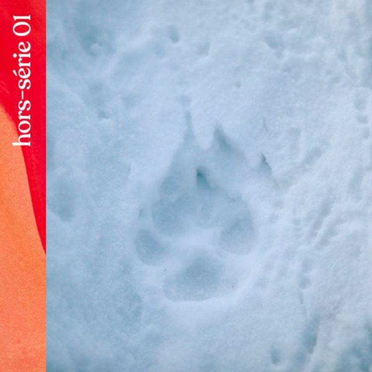 cover art for Hors-série #1 — Le pacte du loup, avec Jérémie Villet