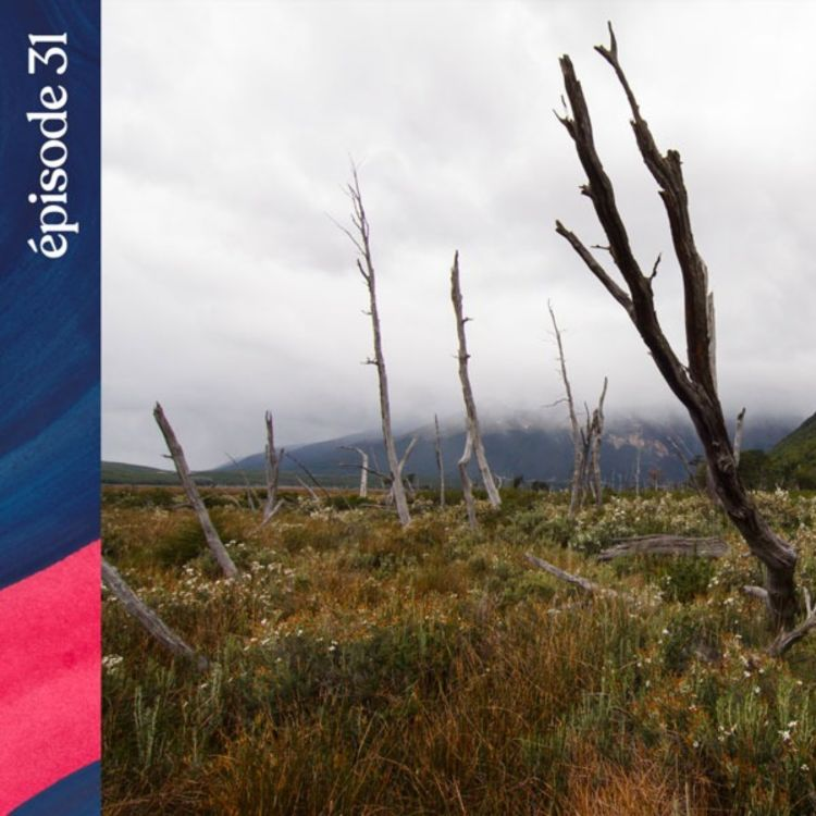 cover art for #31 — Les ombres de la Terre de Feu, avec Lauriane Lemasson