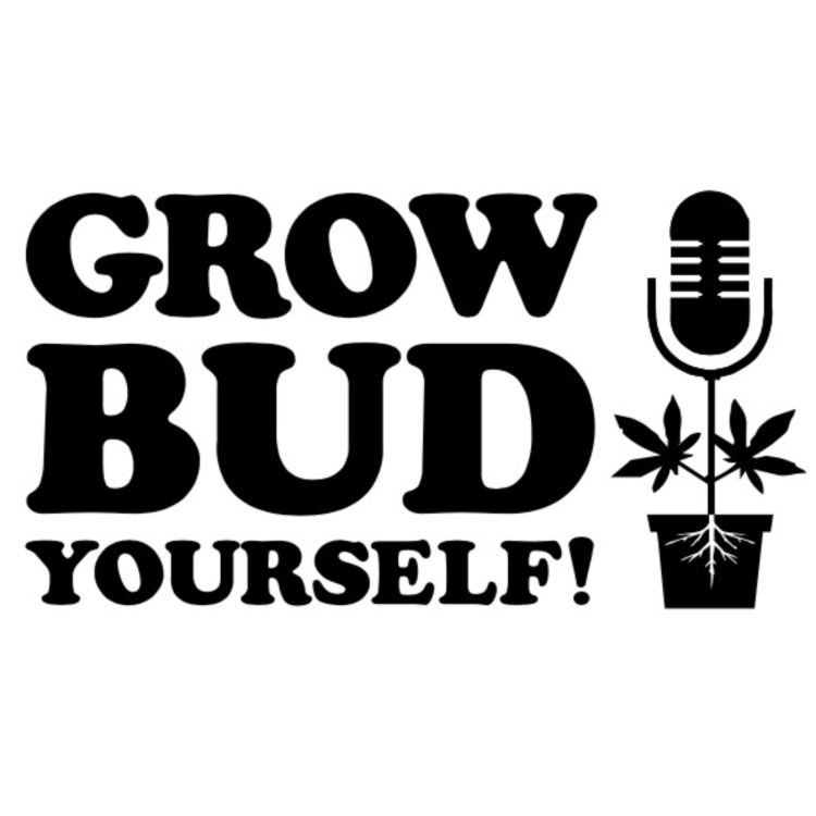 cover art for Grow Bud Yourself Episode 17