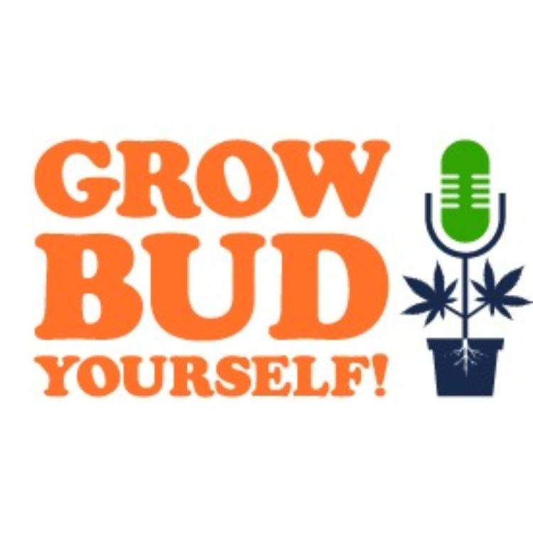cover art for Grow Bud Yourself Episode 50