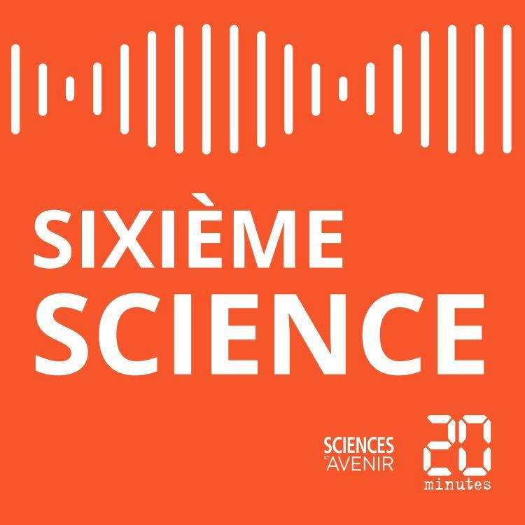 cover art for Sixième Science #01 / Rêvasser ou les bienfaits de la glande sur notre cerveau
