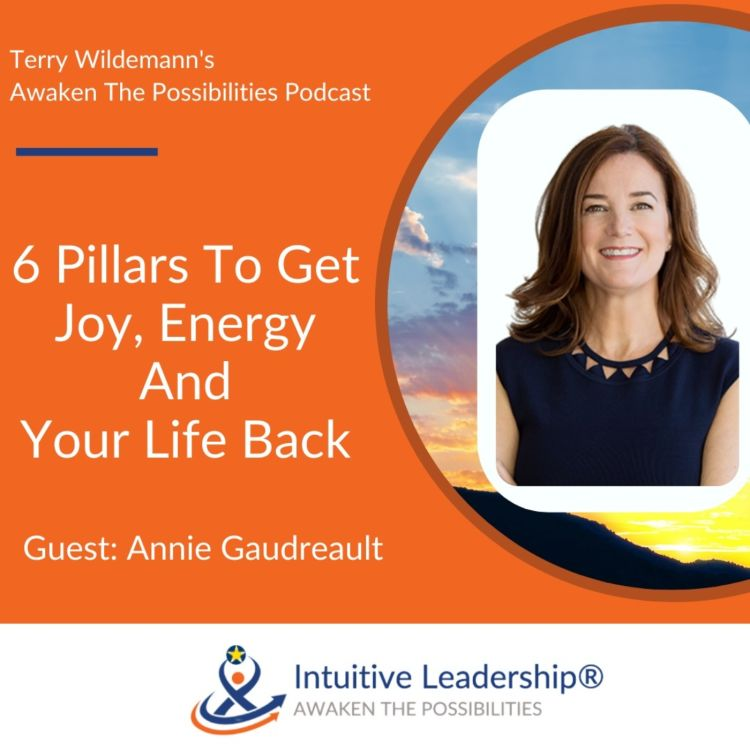 cover art for 6 Pillars To Get Joy, Energy And Your Life Back