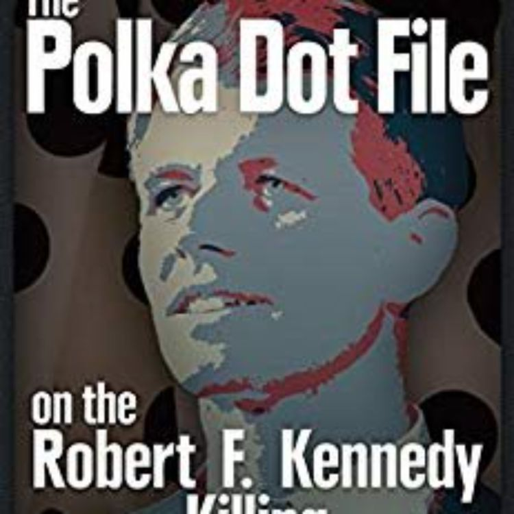 cover art for POLKA DOT FILE -  FERNANDO FAURA (RFK ASSASSINATION SERIES)