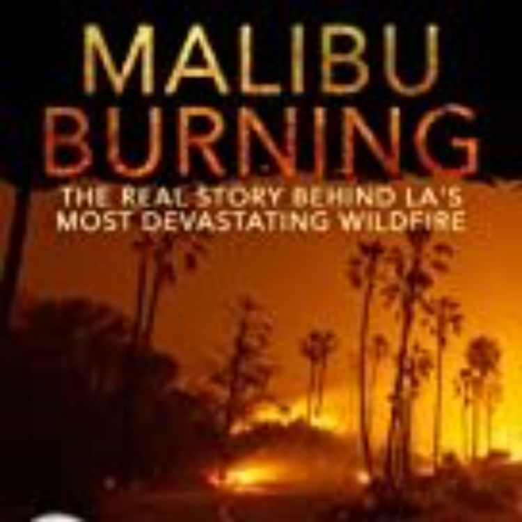 cover art for MALIBU BURNING - ROBERT KERBECK