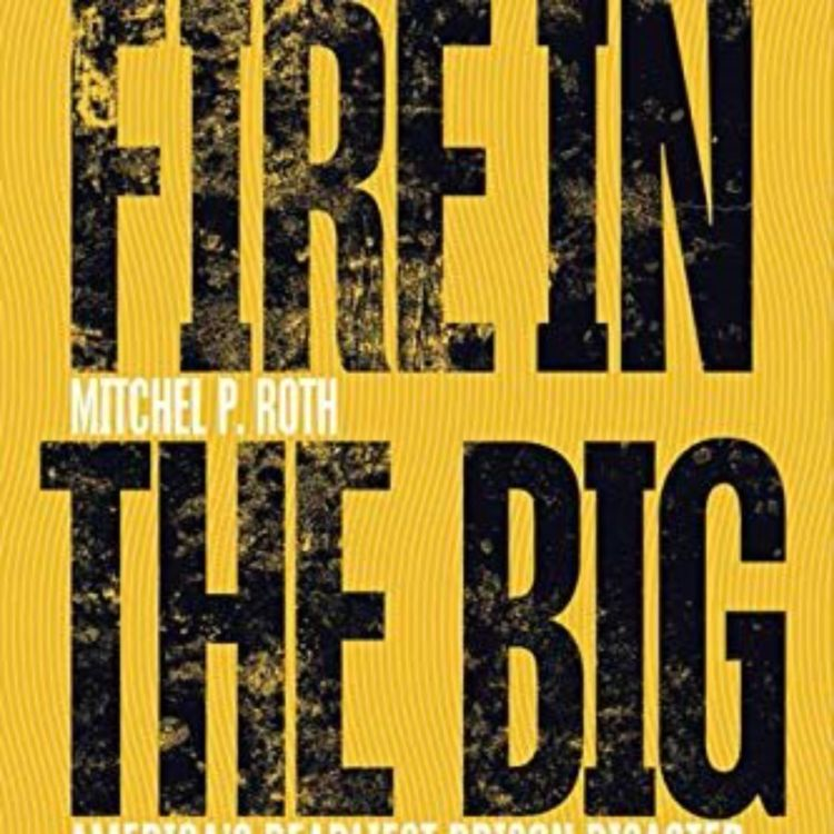 cover art for MITCHEL P. ROTH - FIRE IN THE BIG HOUSE