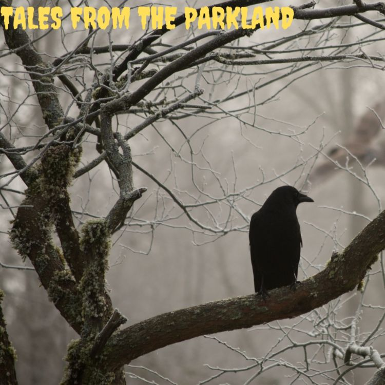 cover art for Ron McGillvray - Tales from the Parkland