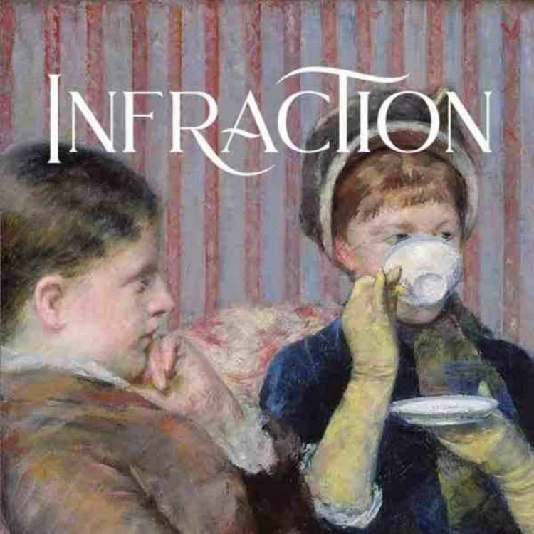 cover art for Yvonne Zipter - Infraction