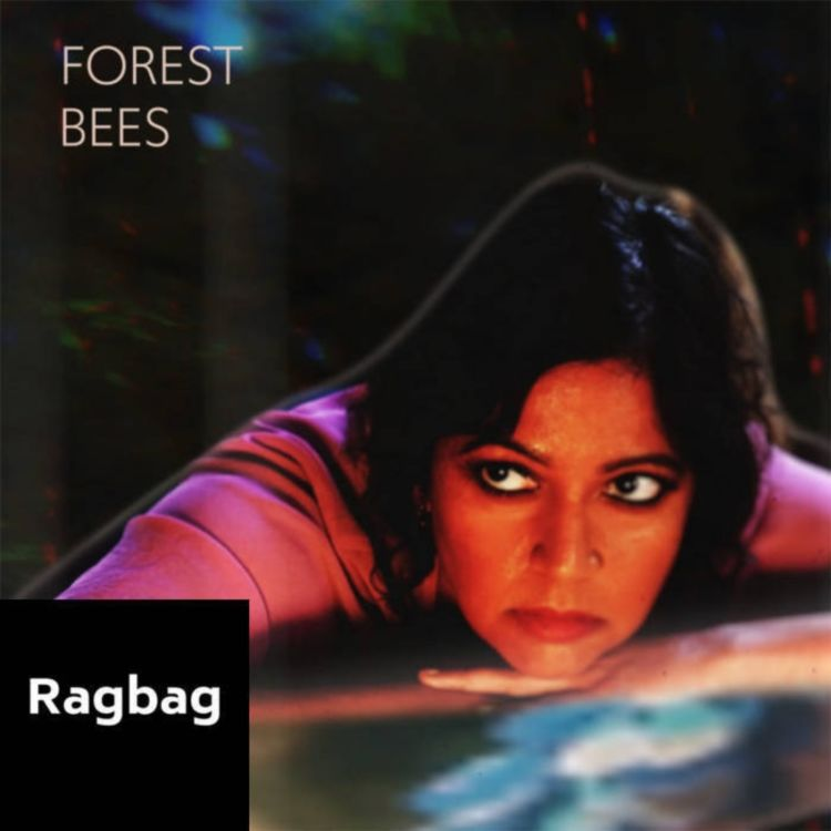 cover art for Ep58: Forest Bees & The Notebook Theft