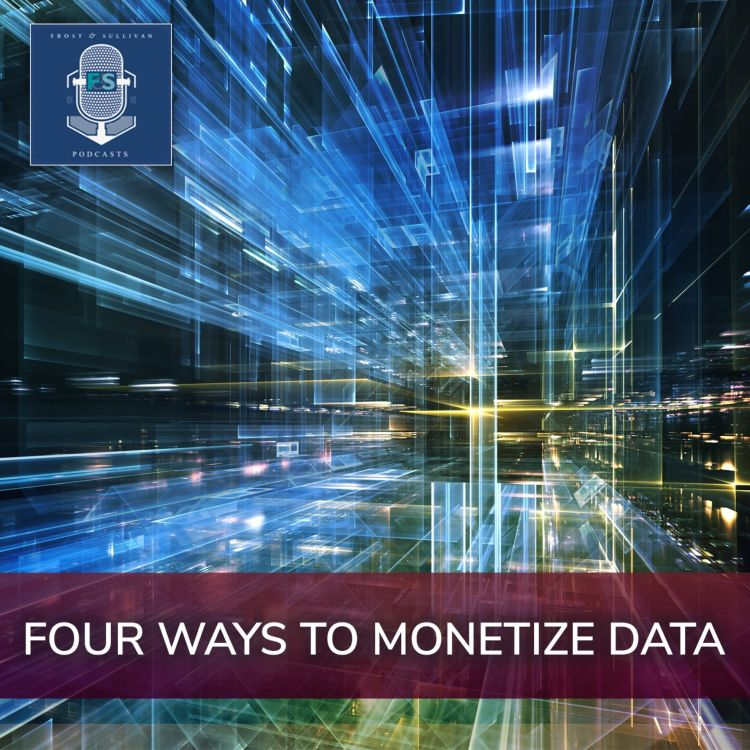 cover art for Four Ways to Monetize Data