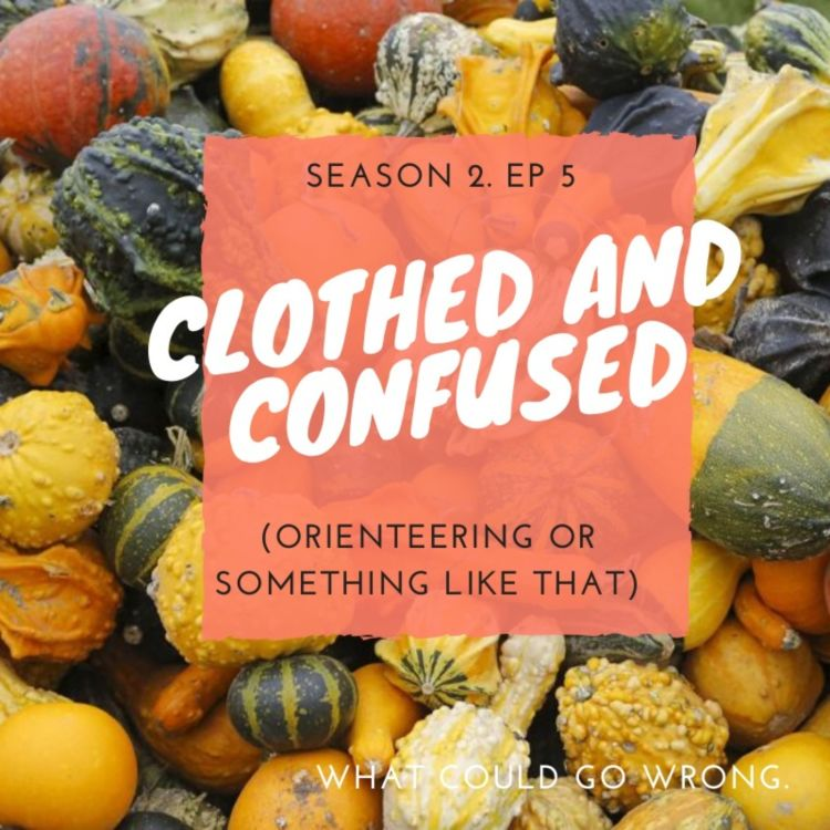 cover art for Clothed and Confused