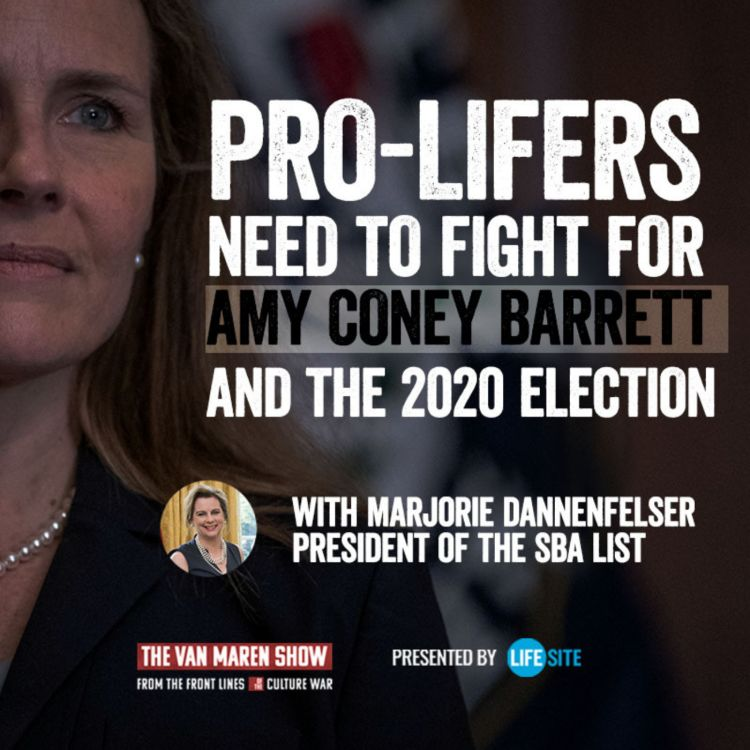 cover art for Pro-lifers need to fight for Amy Coney Barrett and the 2020 election