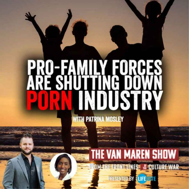 cover art for Anti-porn crusader says pro-family forces are shutting down industry