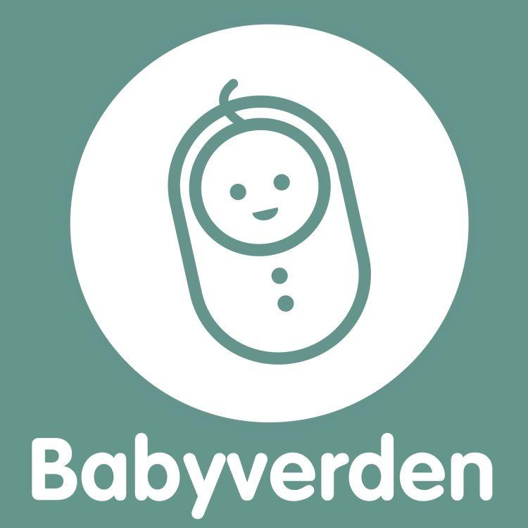 cover art for Det ingen forteller deg om tiden etter fødsel