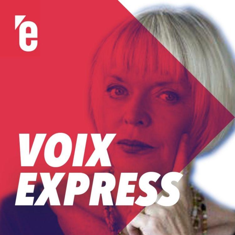 Les Secrets De L Affaire Benalla Podcast Voix Express