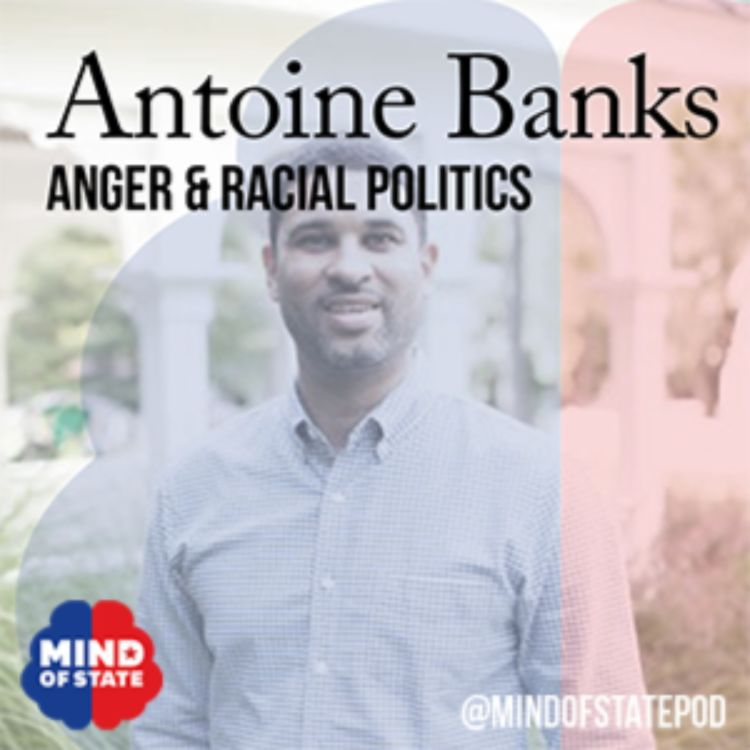 cover art for Anger and Racial Politics