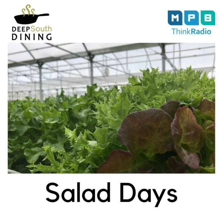 cover art for Deep South Dining | Salad Days