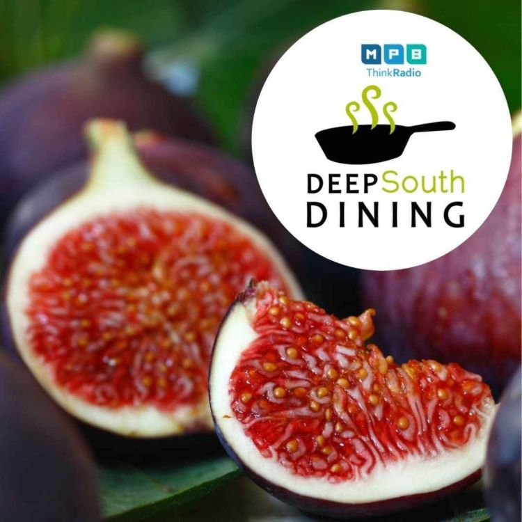 cover art for Deep South Dining | Fig Time