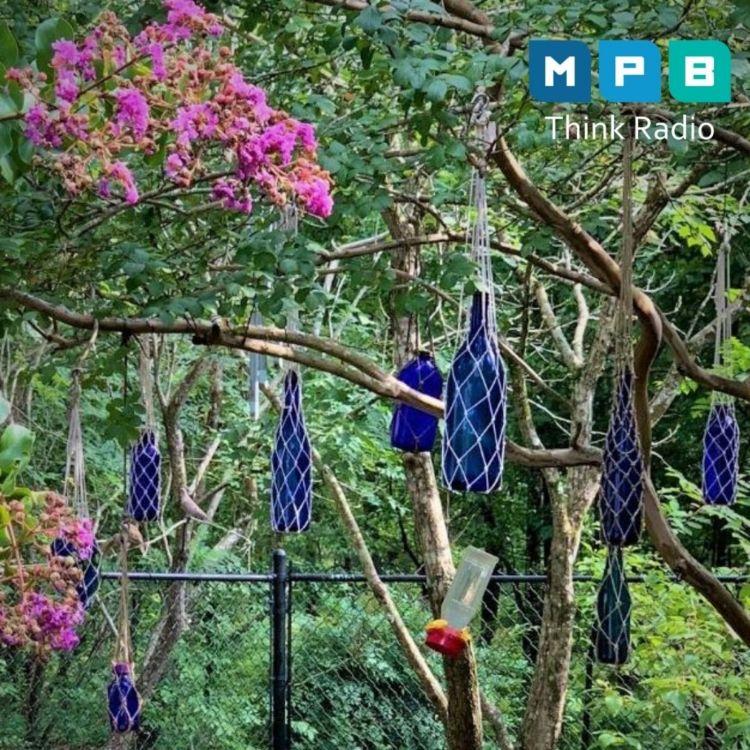 cover art for The Gestalt Gardener:  August Days