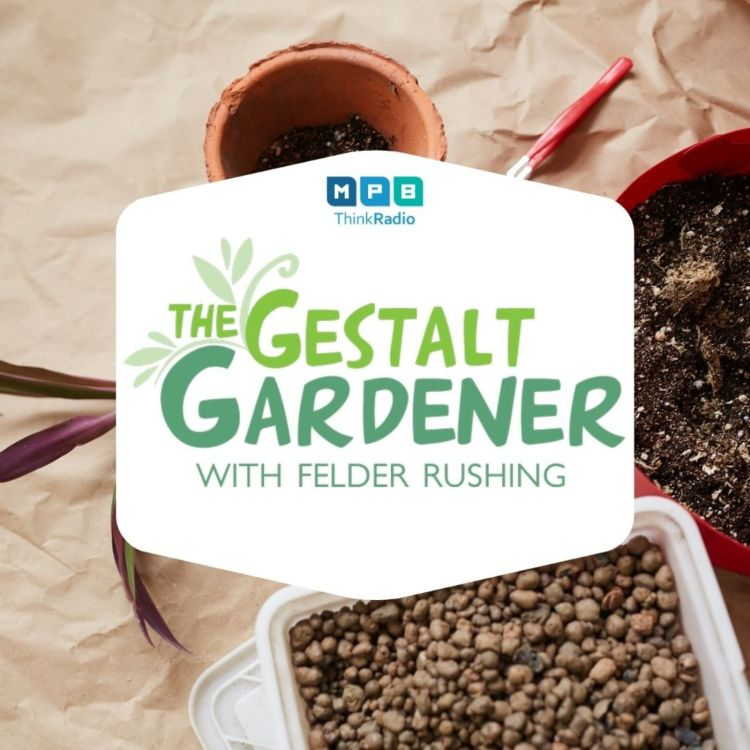 cover art for The Gestalt Gardener:  Get Dirty, But Wash Your Hands