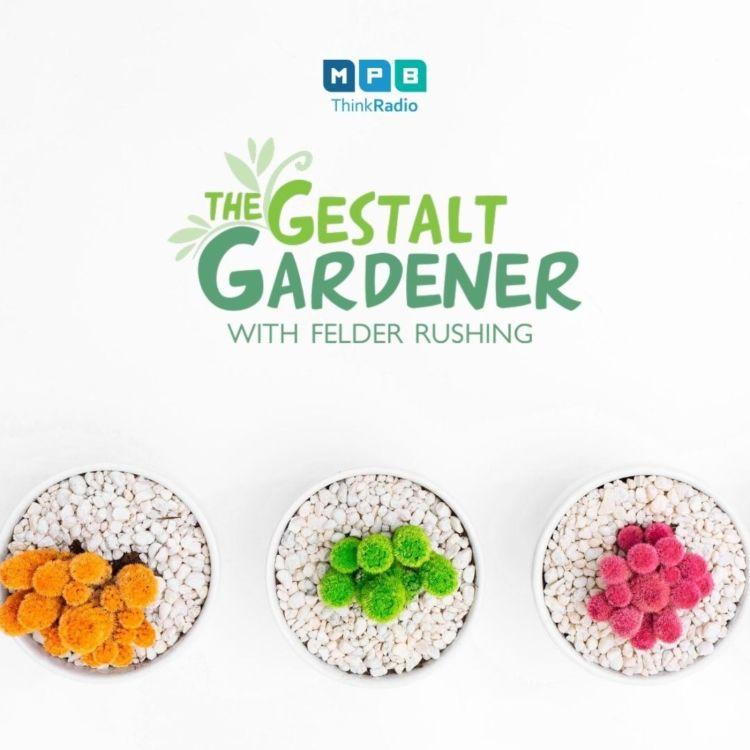 cover art for The Gestalt Gardener | Summer Summer