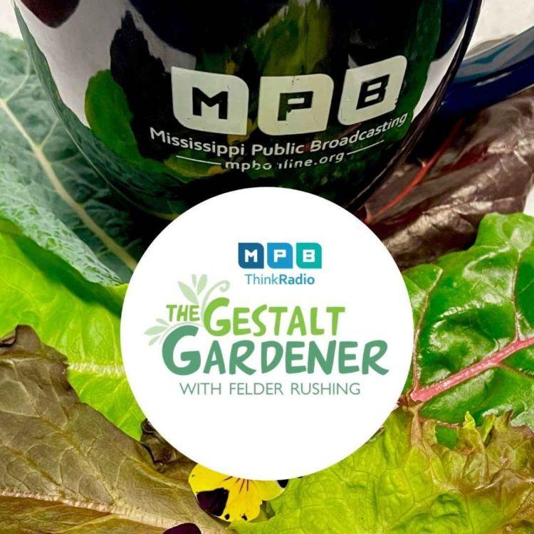 cover art for The Gestalt Gardener | Held Accountable