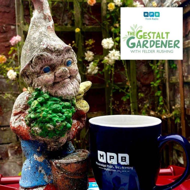 cover art for The Gestalt Gardener | International Felder