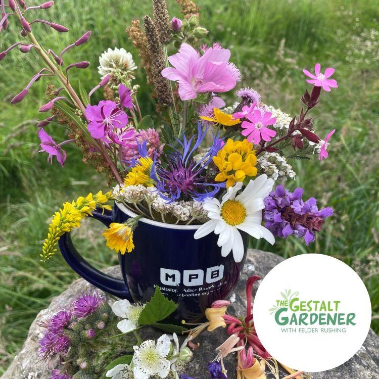 cover art for The Gestalt Gardener | New Mug Felder