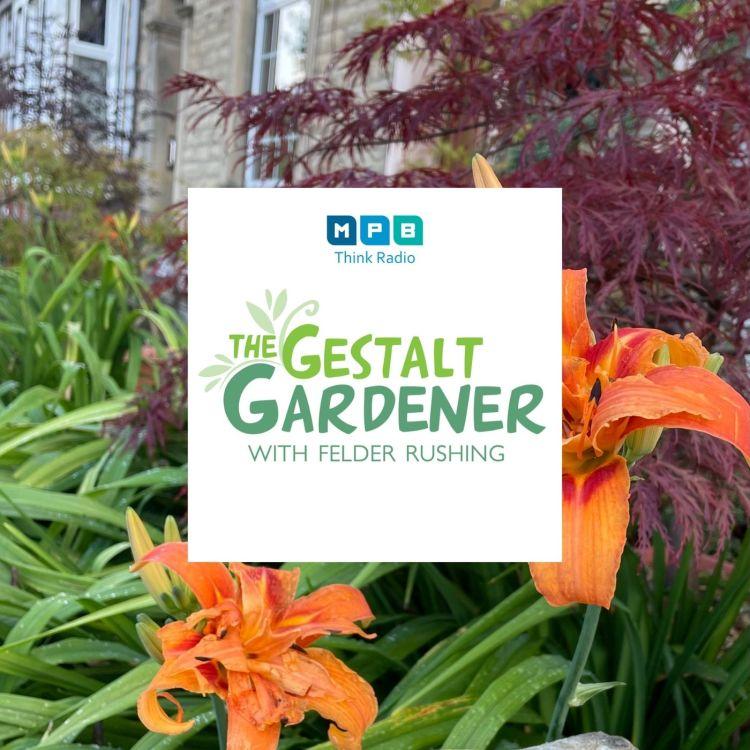 cover art for The Gestalt Gardener | Bye Bye July