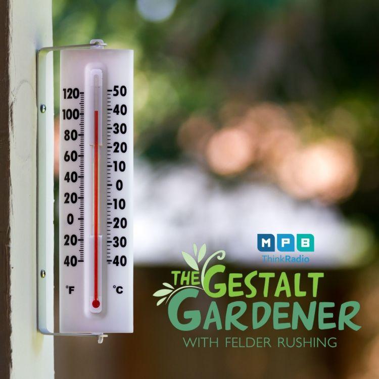 cover art for The Gestalt Gardener | Heat Hot