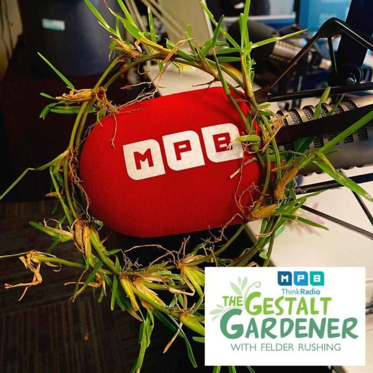 cover art for The Gestalt Gardener | Grassroots
